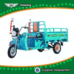 650W New model for large loading QS-E1.6 model 3 wheel electric tricycle for sale