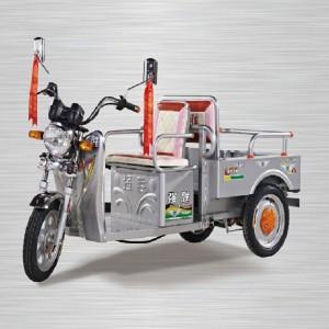 ICAT certified e-rickshaw QS-Butterfly800