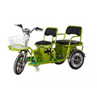 mini electric tricycle manufacturer for sale