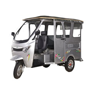 Electric auto rickshaw import from china
