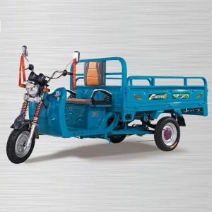 Cargo electric auto rickshaw manufacturers