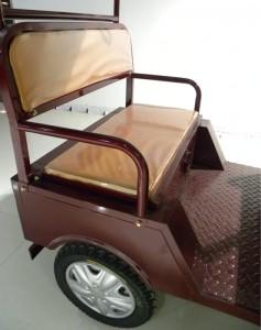 Qiangsheng E Auto Rickshaw tuk tuk For Sale