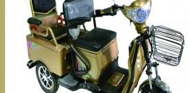 Triciclos eléctricos para adulto mayor doble asiento
